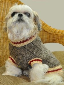 Sock Monkey Dog Sweater Free Pattern