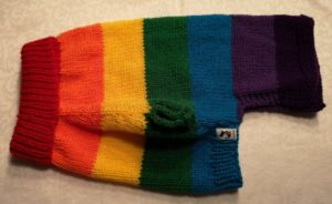 Rainbow Pooch Sweater Knit Pattern