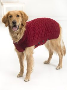 Hand Knitted Free Coat Patterns for Large Dogs