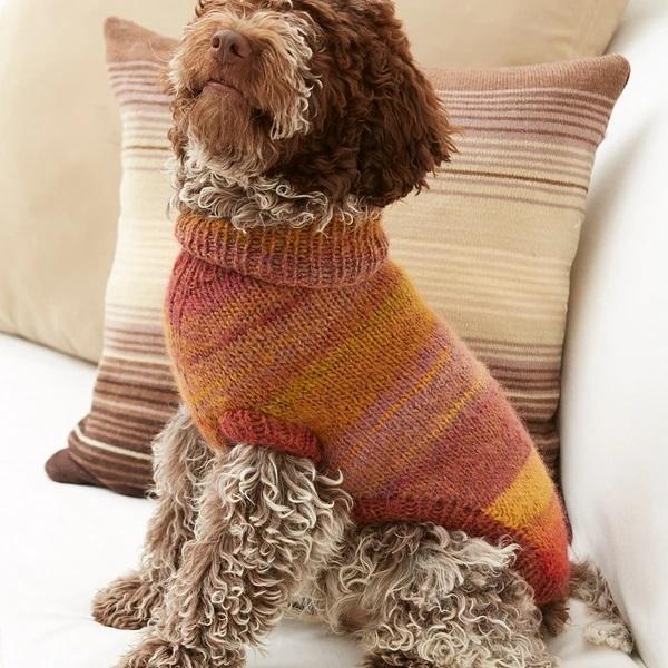 Puppy Pullover Knitting Pattern