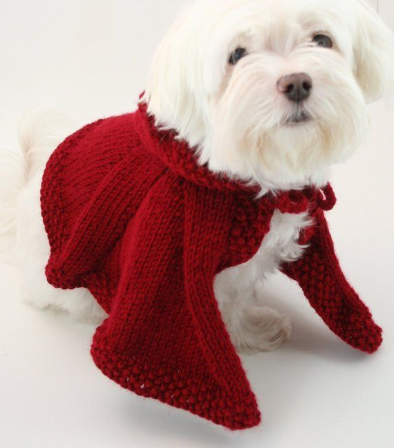 Doggy Red Riding Hood Cape