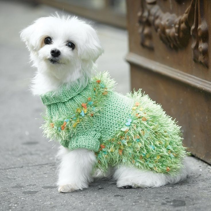 Hot Dog Costume Coat Knitting Pattern